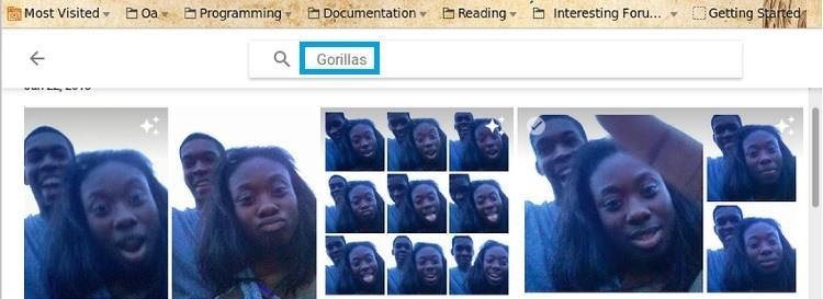 gorilas google photos