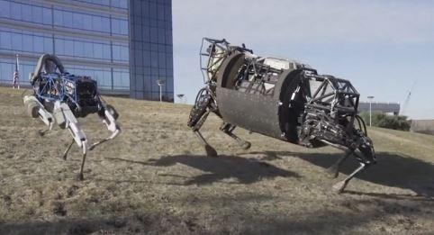 robots de boston
